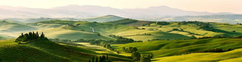 Golden light over green rolling hills and vineyards in Tuscany