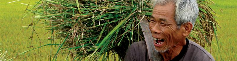 Happy rice farmer in Vietnam