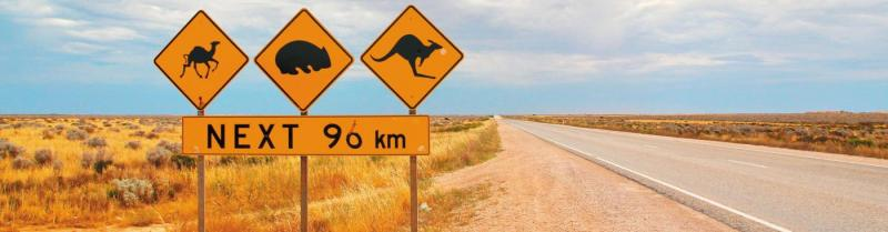Nullarbor Tours with Intrepid Travel
