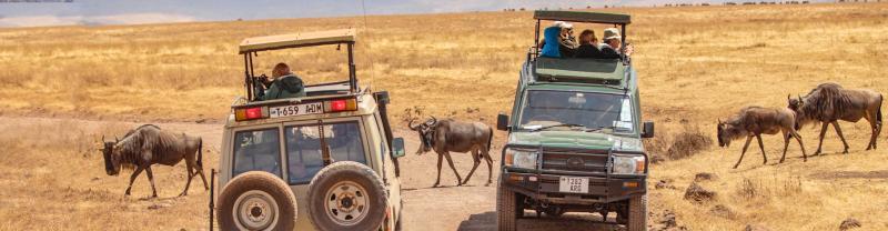 4x4 in Africa