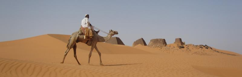 Sudan Meroe Camel Ride