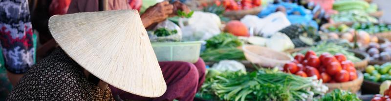 market seller wearing traditional hat Vietnam