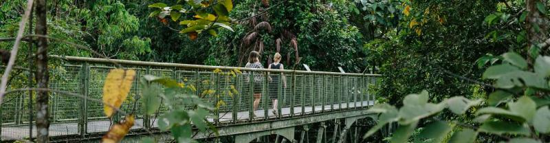 Two travellers cross bridge on rainforest walk in Malaysia