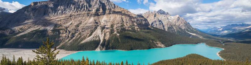 Vibrant colour of Peyto Lake on a sunny day in Canada