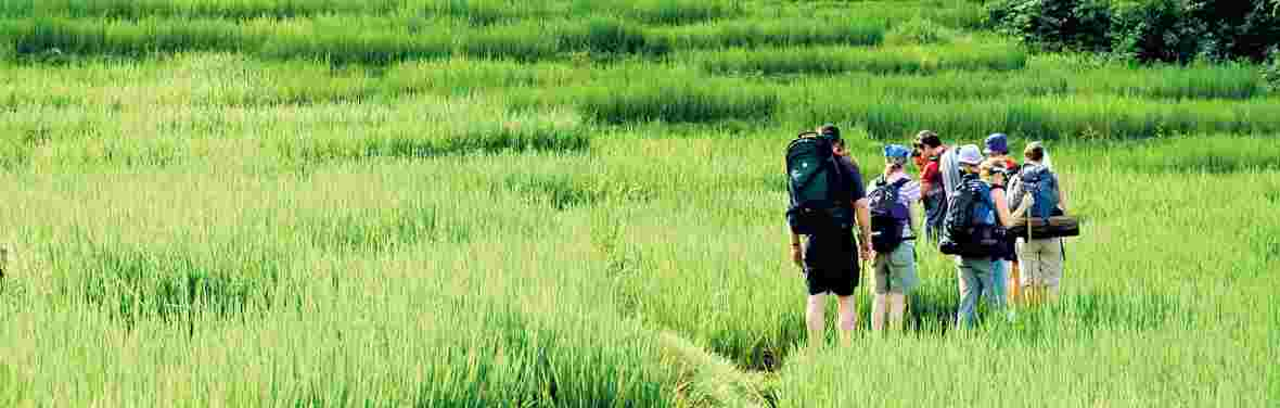 Northern Thailand Active Adventure: Hike Bike & Kayak
