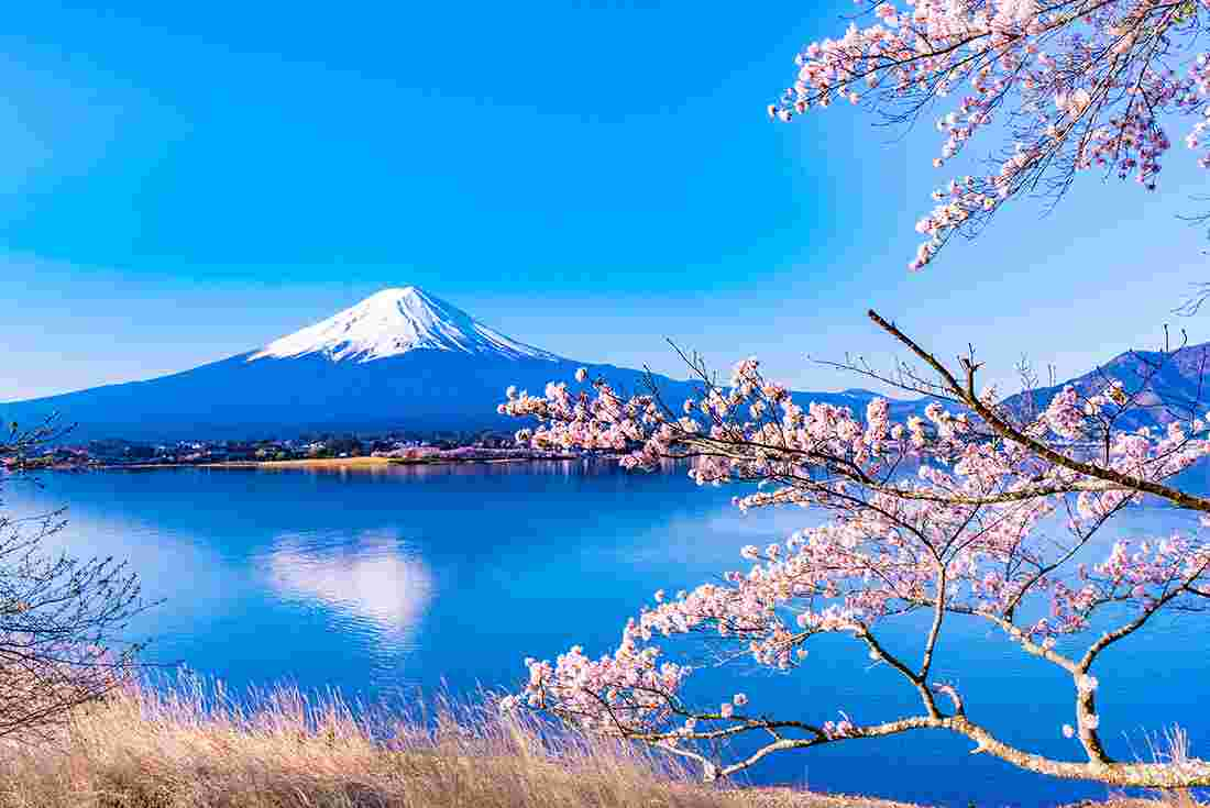 Southern Japan Experience Intrepid Travel Uk