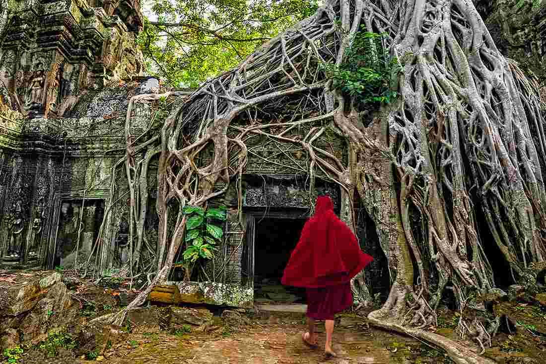 Cambodia Express | Intrepid Travel US