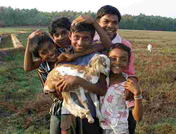 India Family Holiday Intrepid Travel Us