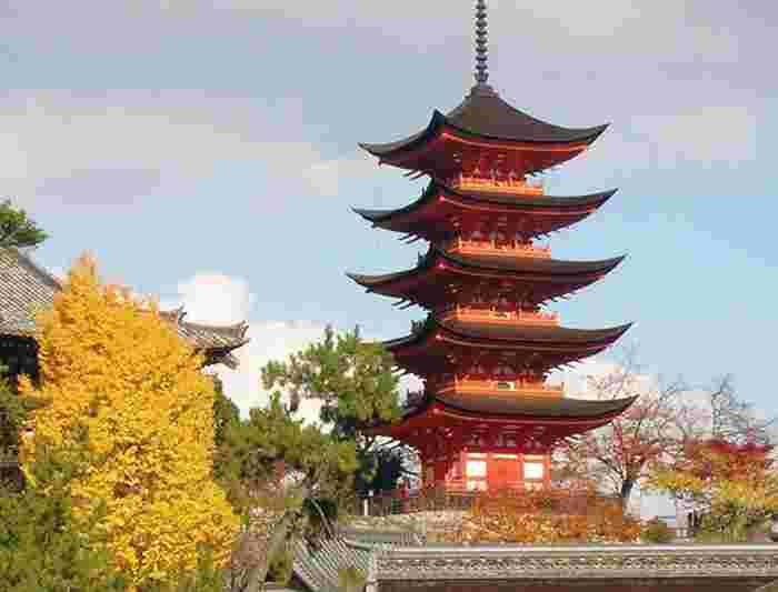 Japan Tours Holidays Intrepid Travel US - Japan tours