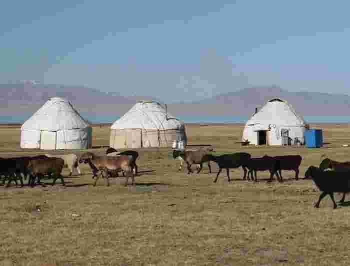 dating culture in kyrgyzstan bi males dating app