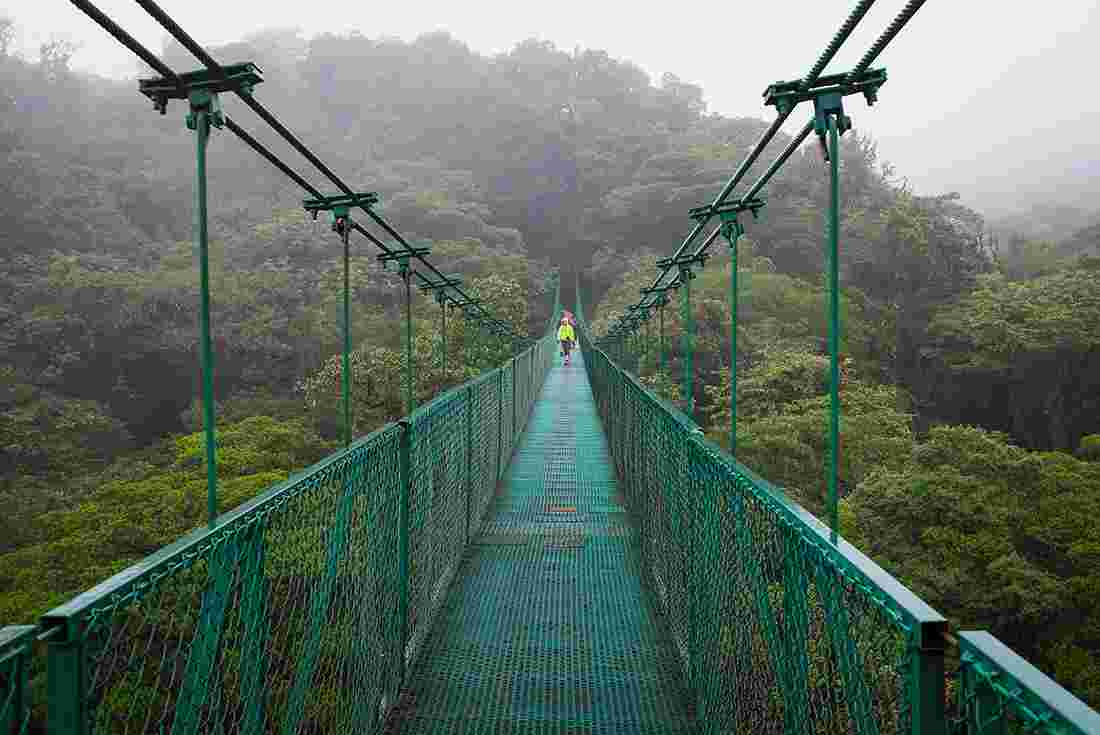 Costa rica tours travel intrepid travel au traveller crossing a bridge in the costa rica cloud forest kristyandbryce Gallery