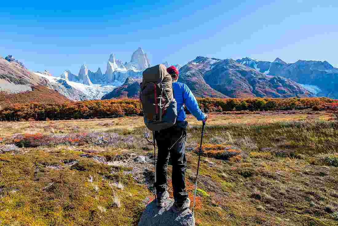 Capital one deals patagonia