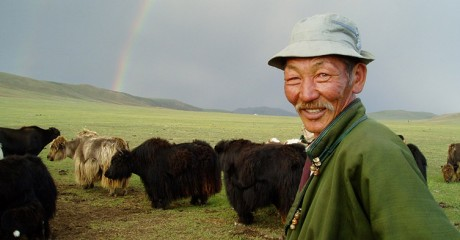 Local life in Mongolia by Sonia Muir