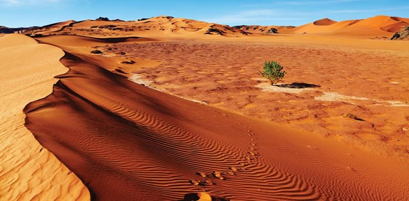 JAN2014_algeria_sahara-desert