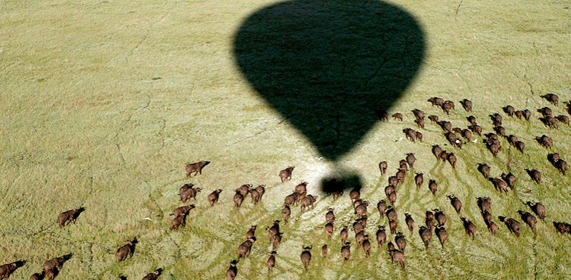 Balloon ride in Serengeti Tanzania by Sui Oinn