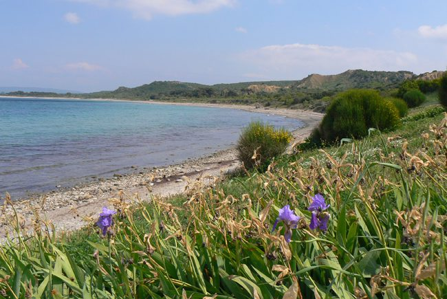 Anzac Cove Gallipoli Turkey