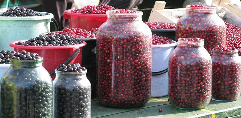 berries in Irkutsk Russia