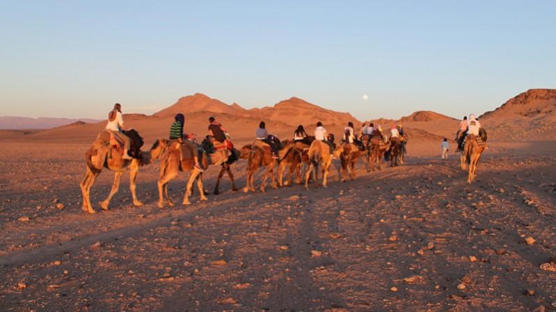 morocco-stars--- richard allaway