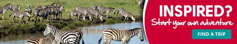 blog-800x150-AFRICA