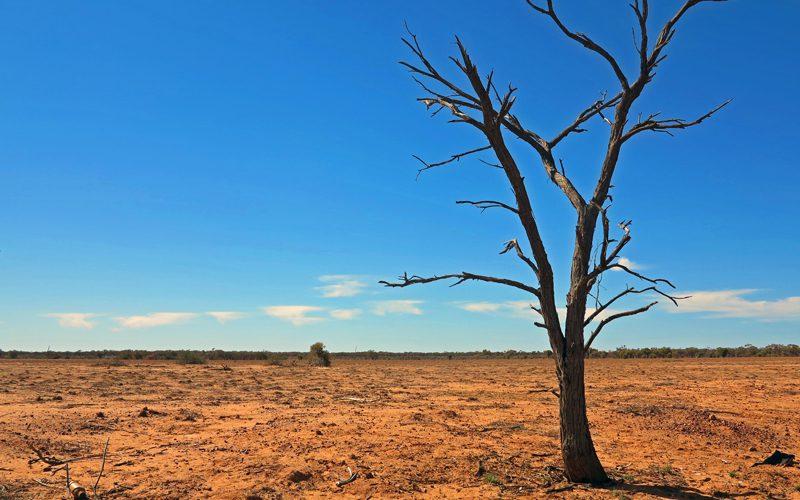 australia-travel-guide---jo-stewart-5