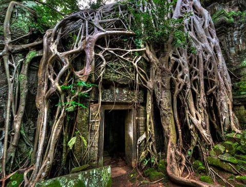 Secrets Of Angkor Cambodia Tours Intrepid Travel Au